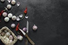 Ξηρά πιπέρια και σκόρδο τσίλι στο σκοτεινό υπόβαθρο Στοκ εικόνα με δικαίωμα ελεύθερης χρήσης