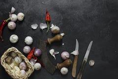 Ξηρά πιπέρια και σκόρδο τσίλι στο σκοτεινό υπόβαθρο Στοκ φωτογραφίες με δικαίωμα ελεύθερης χρήσης
