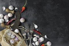 Ξηρά πιπέρια και σκόρδο τσίλι στο σκοτεινό υπόβαθρο Στοκ Εικόνα