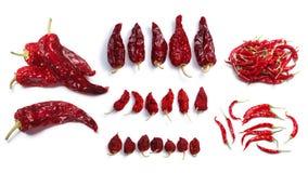 Ξηρά πιπέρια της Χιλής Στοκ φωτογραφίες με δικαίωμα ελεύθερης χρήσης