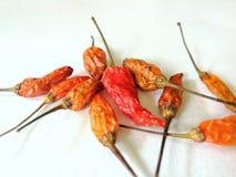 ξηρά πιπέρια τσίλι Στοκ Εικόνες
