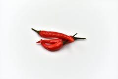 Ξηρά πιπέρια τσίλι που απομονώνονται Στοκ Εικόνες