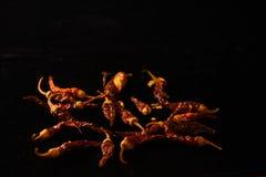 Ξηρά πιπέρια τσίλι στο μαύρο υπόβαθρο Στοκ Φωτογραφίες