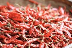 Ξηρά πιπέρια τσίλι, ως υπόβαθρο τροφίμων Στοκ Εικόνες