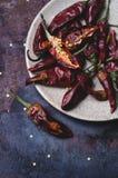 ξηρά πιπέρια τσίλι Στοκ Εικόνα