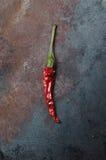 ξηρά πιπέρια τσίλι Στοκ εικόνες με δικαίωμα ελεύθερης χρήσης