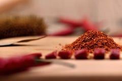 Ξηρά πιπέρια τσίλι Στοκ φωτογραφίες με δικαίωμα ελεύθερης χρήσης