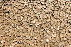 ξηρά, ραγισμένη λάσπη Στοκ Εικόνες