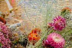 Ξηρά σύνθεση λουλουδιών Στοκ Φωτογραφία