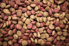 Ξηρά ταπετσαρία τροφίμων σκυλιών Στοκ Εικόνα