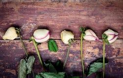 Ξηρά τριαντάφυλλα στον ξύλινο πίνακα Στοκ Φωτογραφίες