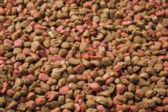 ξηρά τρόφιμα γατών Πλήρης πληθυσμός Υπόβαθρο των κόκκων στοκ εικόνες με δικαίωμα ελεύθερης χρήσης