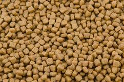 Ξηρά τρόφιμα γατών Στοκ εικόνα με δικαίωμα ελεύθερης χρήσης