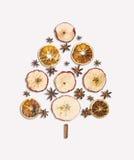 Ξηρά φρούτα και καρύκευμα χριστουγεννιάτικων δέντρων στο λευκό Στοκ Φωτογραφία