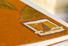 ξηρά φύλλα κάλυψης βιβλίων Στοκ φωτογραφία με δικαίωμα ελεύθερης χρήσης