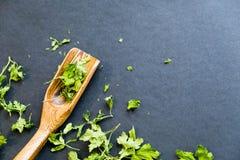 Ξηρά φύλλα cilantro σε ένα ξύλινο κουτάλι Φυσικό φως Εκλεκτική εστίαση Κλείστε επάνω σε ένα μαύρο υπόβαθρο Η τοπ άποψη, επίπεδη β Στοκ Φωτογραφίες