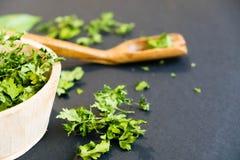 Ξηρά φύλλα cilantro σε ένα ξύλινο κουτάλι Φυσικό φως Εκλεκτική εστίαση Κλείστε επάνω σε ένα μαύρο υπόβαθρο Τοπ άποψη, επίπεδη Στοκ Εικόνες
