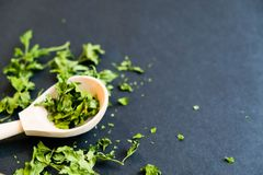 Ξηρά φύλλα cilantro σε ένα ξύλινο κουτάλι Φυσικό φως Εκλεκτική εστίαση Κλείστε επάνω σε ένα μαύρο υπόβαθρο Τοπ άποψη, επίπεδη Στοκ εικόνες με δικαίωμα ελεύθερης χρήσης