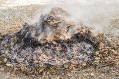 Ξηρά φύλλα εγκαυμάτων Στοκ εικόνα με δικαίωμα ελεύθερης χρήσης
