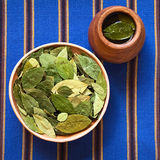 Ξηρά φύλλα κοκών και τσάι κοκών Στοκ Φωτογραφίες