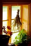 Ξηρά χορτάρια στο παράθυρο Στοκ εικόνες με δικαίωμα ελεύθερης χρήσης