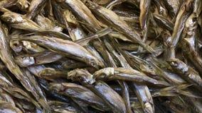 Ξηρά ψάρια στην αγορά Πυροβολισμός κινηματογραφήσεων σε πρώτο πλάνο, τηγάνι, 4k απόθεμα βίντεο
