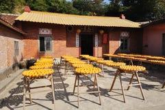 ξηρά persimmons στοκ φωτογραφία με δικαίωμα ελεύθερης χρήσης