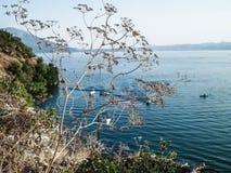 Ξηρές εγκαταστάσεις και λίμνη Οχρίδα στοκ εικόνες