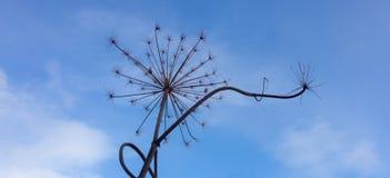 Ξηρές εγκαταστάσεις ομπρελών Στοκ φωτογραφία με δικαίωμα ελεύθερης χρήσης