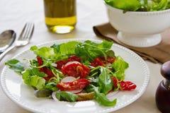 Ξηραμένη από τον ήλιο ντομάτα με τη σαλάτα arugula Στοκ εικόνα με δικαίωμα ελεύθερης χρήσης
