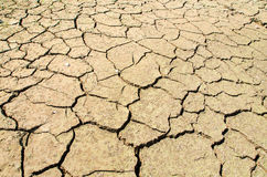 Ξηρασία, οι επίγειες ρωγμές, κανένα ζεστό νερό, έλλειψη υγρασίας στοκ φωτογραφία με δικαίωμα ελεύθερης χρήσης