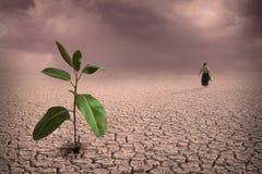 ξηρασία Στοκ φωτογραφίες με δικαίωμα ελεύθερης χρήσης