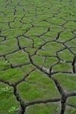 ξηρασία 2 Στοκ Φωτογραφία
