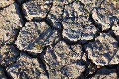 Ξηρασία, Ploumanach, Βρετάνη, Γαλλία Στοκ φωτογραφίες με δικαίωμα ελεύθερης χρήσης