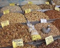 ξηροί θησαυροί καρυδιών γ Στοκ Εικόνες