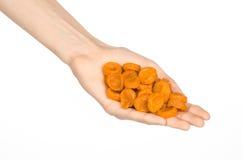 Ξηροί καρποί και θέμα προετοιμασιών γεύματος: ανθρώπινο χέρι που κρατά τα πορτοκαλιά ξηρά βερίκοκα που απομονώνονται στο άσπρο υπ Στοκ Φωτογραφίες