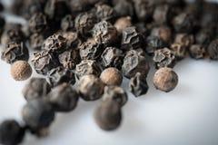 Ξηροί μαύροι σπόροι nigrum αυλητών πιπεριών, κινηματογράφηση σε πρώτο πλάνο και εκλεκτική εστίαση στοκ εικόνες με δικαίωμα ελεύθερης χρήσης