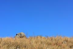 Ξηροί χλόες και βράχος Στοκ φωτογραφία με δικαίωμα ελεύθερης χρήσης