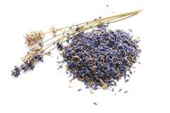 ξηροί lavender οφθαλμών μίσχοι Στοκ Εικόνα