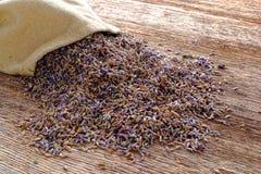 Ξηροί Lavender σπόροι και Burlap τσάντα πέρα από το παλαιό δάσος Στοκ εικόνες με δικαίωμα ελεύθερης χρήσης