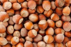 Ξηροί unshelled σπόροι φουντουκιών ολόκληρων των καρυδιών ως υπόβαθρο στοκ εικόνες