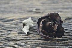 Ξηρός αυξήθηκε στο ξύλινο υπόβαθρο, σπασμένη έννοια καρδιών Στοκ Εικόνες