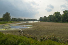 Ξηρός ποταμός με το ρύπο και τη δασική σκιαγραφία Στοκ εικόνα με δικαίωμα ελεύθερης χρήσης