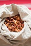 ξηρός σάκος μήλων Στοκ εικόνες με δικαίωμα ελεύθερης χρήσης