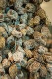 Ξηρός - υπόβαθρο φρούτων Σειρές των ξηρών καρπών στην αγορά του Sochi Στοκ φωτογραφία με δικαίωμα ελεύθερης χρήσης