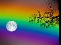 ξηρός φοίνικας σκιαγραφιών ουρανού πανσελήνων και ουράνιων τόξων Στοκ Εικόνες