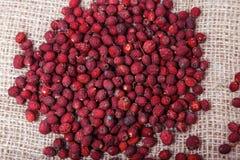 Ξηρός - φρούτα και μούρα στο υπόβαθρο απόλυσης Στοκ φωτογραφία με δικαίωμα ελεύθερης χρήσης