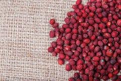 Ξηρός - φρούτα και μούρα στο υπόβαθρο απόλυσης Στοκ εικόνες με δικαίωμα ελεύθερης χρήσης