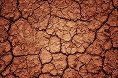 ξηρότητα Στοκ Εικόνα