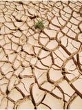 ξηρότητα στοκ εικόνες